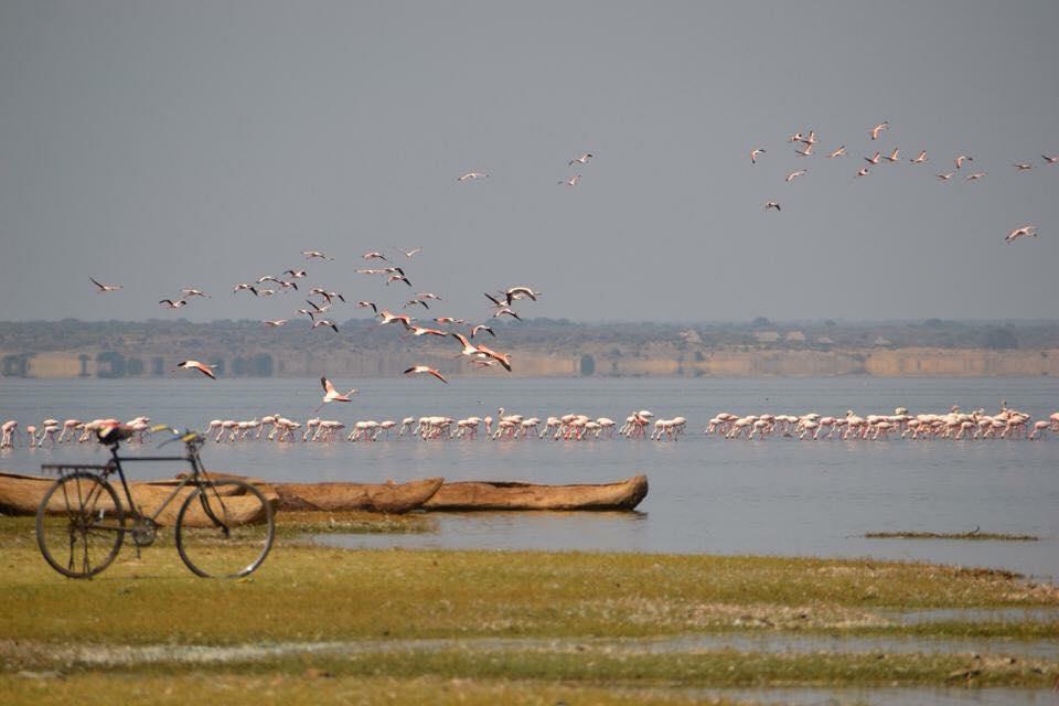 Lake Manyara Mountainbike trip